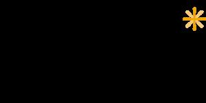 Logo_Belicht_geel_klein